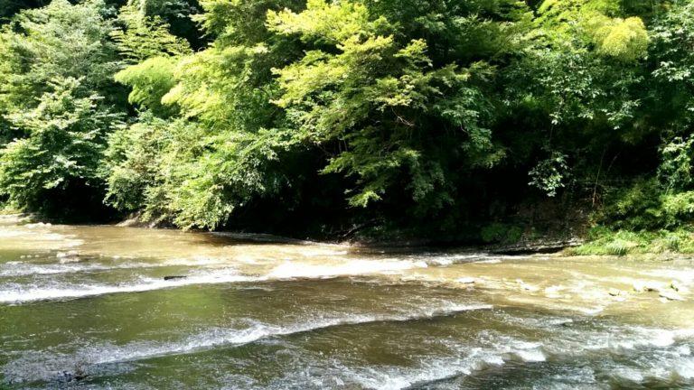 養老渓谷の川