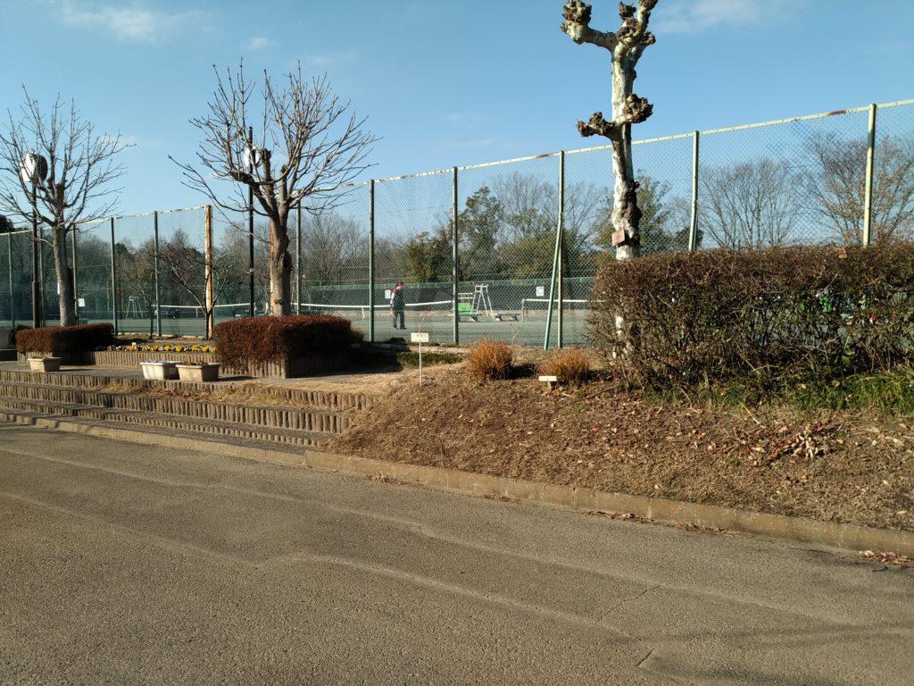 城山公園テニスコート