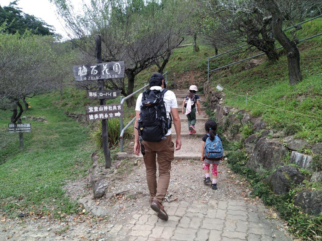 宝登山15