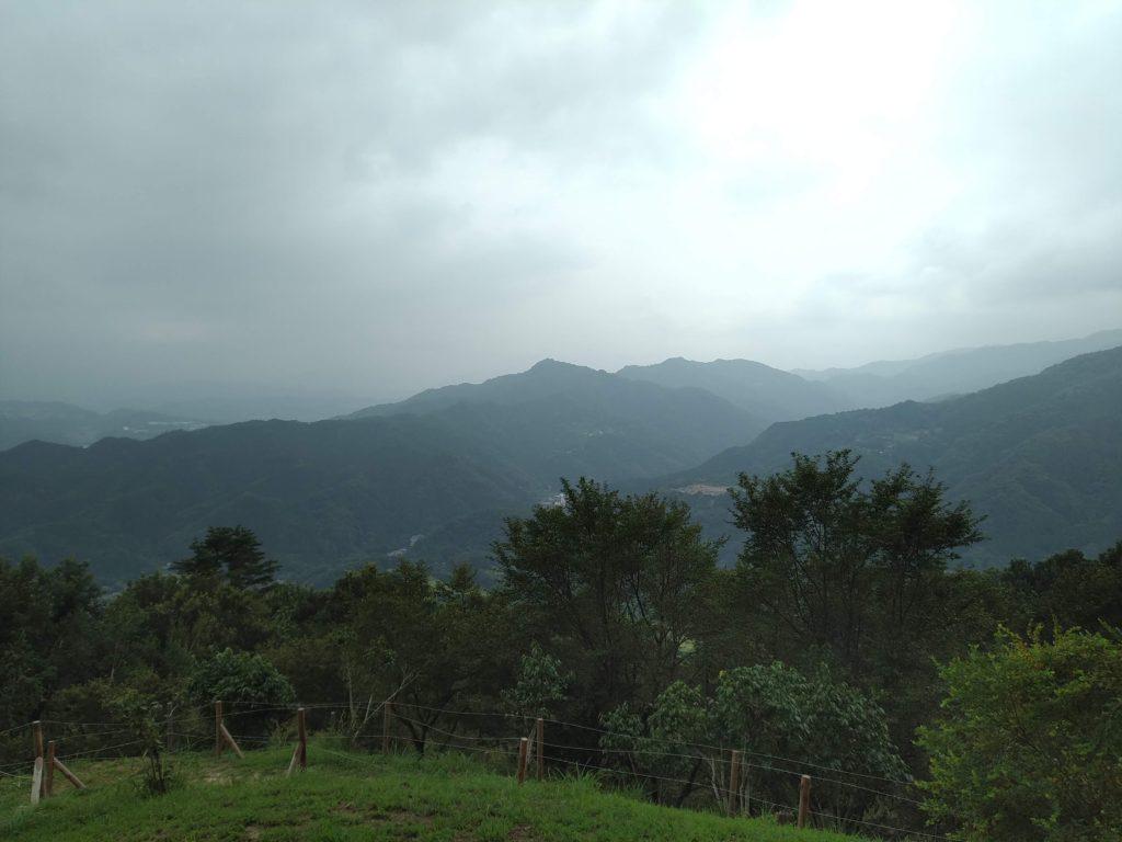 宝登山16